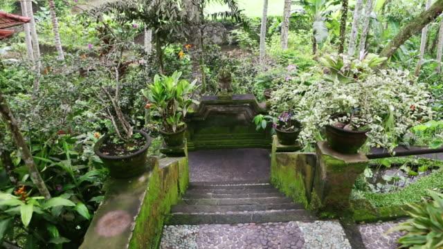 ms tu shot of beautiful exotic garden, stairs / ubud, bali, indonesia - ubud district stock videos & royalty-free footage