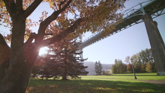 WS POV SLO MO Shot of beautiful sunny park shows autumn fall leaves and colors with sun peaks around tree and large steel St. Johns Bridge / Portland, Oregon, United States