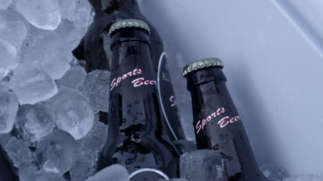 cu shot of beer bottles in cooler / valhalla, new york, united states - cooler container stock videos and b-roll footage