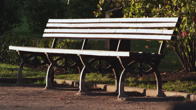 ms shot of bench in garden / riga, latvia - bench stock videos & royalty-free footage