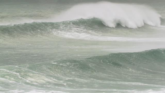 vídeos de stock, filmes e b-roll de ms shot of big rolling wave / elephant beach,  falkland, islands - ilhas do oceano atlântico