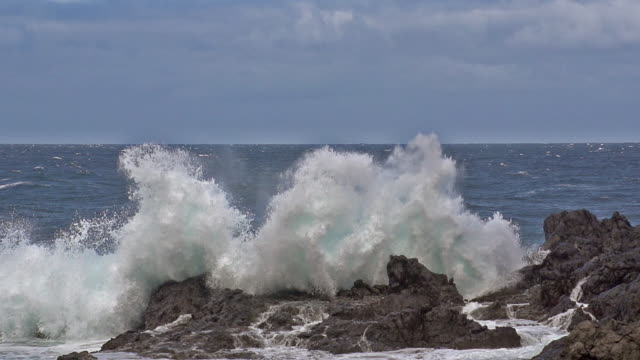 vídeos de stock, filmes e b-roll de ms slo mo shot of big wave crushing on rocks / tenerife island, canary islands, spain - quebrando