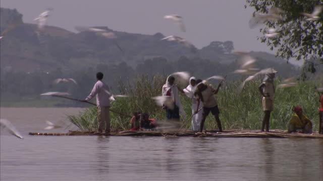shot of birds circulating fishermen on rafts - fisherman stock videos & royalty-free footage
