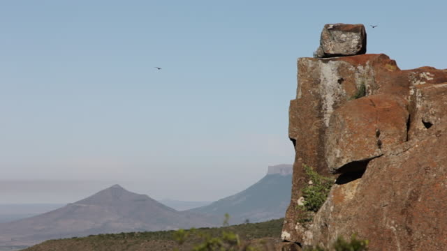 ms shot of birds flying past large rocks / the karoo, south africa - karoo bildbanksvideor och videomaterial från bakom kulisserna
