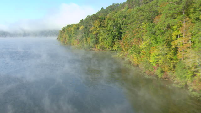 MS AERIAL Shot of Black Warrior River with light fog along tree line at edge of river in Tuscaloosa County / Alabama, United States