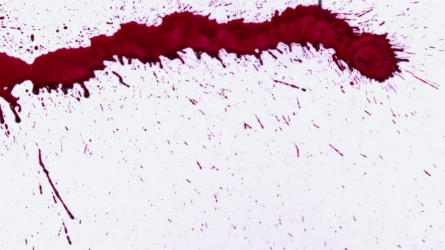 CU SLO MO Shot of Blood Dripping against White Background / Calvados, Normandy, France