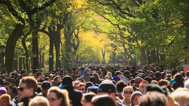 MS Shot of blowing autumnal fallen leaves and Crowd at mall surrounded by autumn color trees / New York, United States