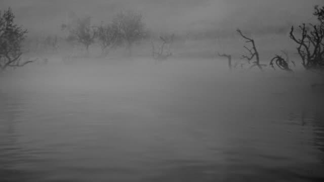 WS POV Shot of boat moving down river slowly through fog