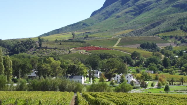 ws zo shot of boschendal wine estate and vineyards / franschhoek, western cape, south africa - franschhoek stock videos and b-roll footage