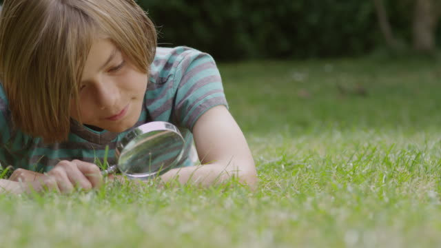 MS LA Shot of Boy with magnifying glass, Learning about nature / London, Hampstead, United Kingdom
