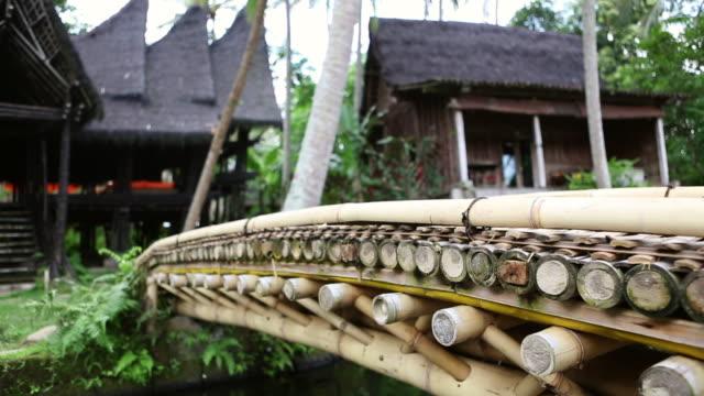cu pan shot of bridge over pond / ubud, bali, indonesia - 溜水点の映像素材/bロール