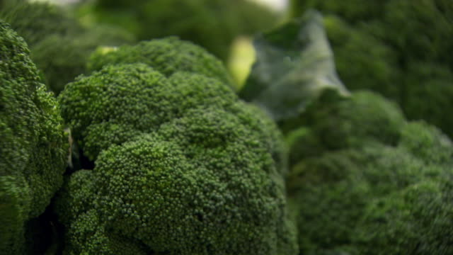 cu pan shot of broccoli / sydney, new south wales, australia - ブロッコリー点の映像素材/bロール