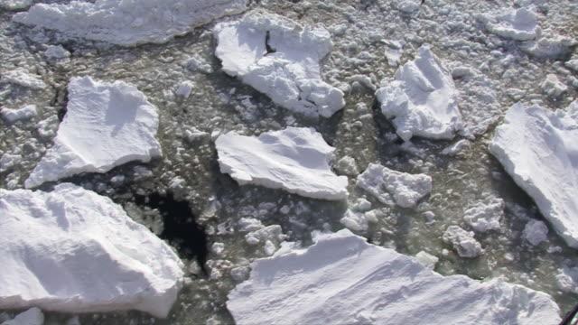 ms shot of broken ice in sea / antarctica - antarctica melting stock videos & royalty-free footage