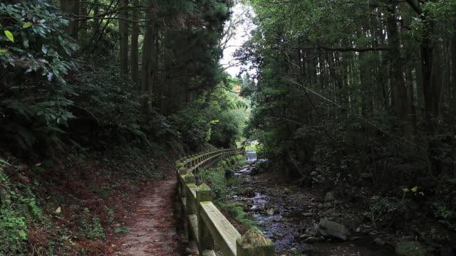 ms shot of brook and path at iwami ginzan silver mine,world heritage / iwami, shimane prefecture, japan - shimane prefecture stock videos & royalty-free footage
