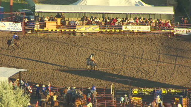 MS AERIAL TS ZO Shot of bucking bronco enters ring and tosses cowboy at Montana State Fair / Montana, United States