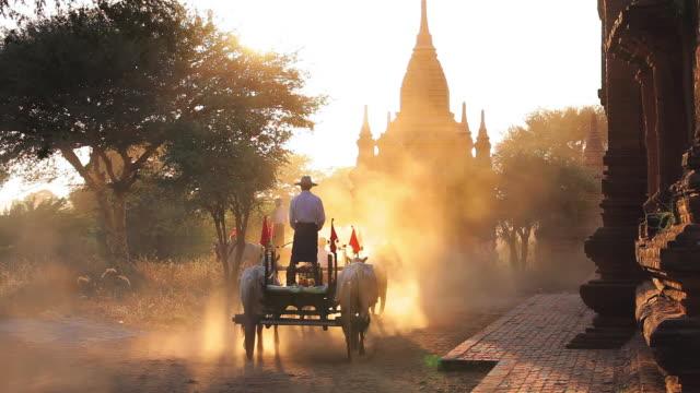 MS Shot of Bullock carts and pagodas at sunset Kingdom of Pagan at sunset AUDIO / Bagan, Burma