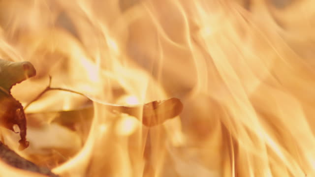 'ECU SLO MO Shot of burning branches and leaves, flames, fire / Nannup, Western Australia, Australia'