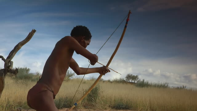 MS LA Shot of Bushman taking aim with bow and arrow, Boesmanland / North West Province, South Africa