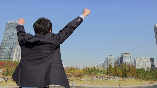 stockvideo's en b-roll-footage met ms tu slo mo shot of businessman raising arm in excitement / incheon, south korea - incheon
