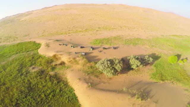 vídeos y material grabado en eventos de stock de ws aerial shot of camping in tengger desert/alashan,inner mongolia,china. - estepa