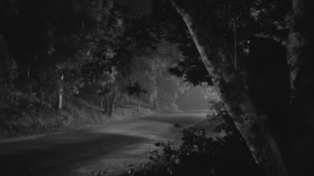 ms pan shot of car moving on road through rural area at night - von bäumen gesäumt stock-videos und b-roll-filmmaterial