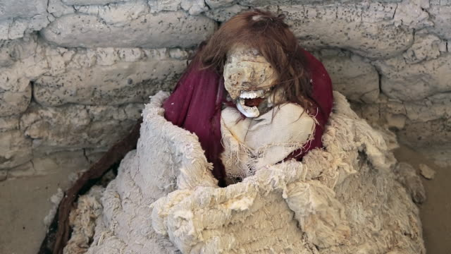 ms shot of chauchilla cemetery with mummies and skulls in grave / south of peru, nazca, peru - place concerning death stock videos and b-roll footage
