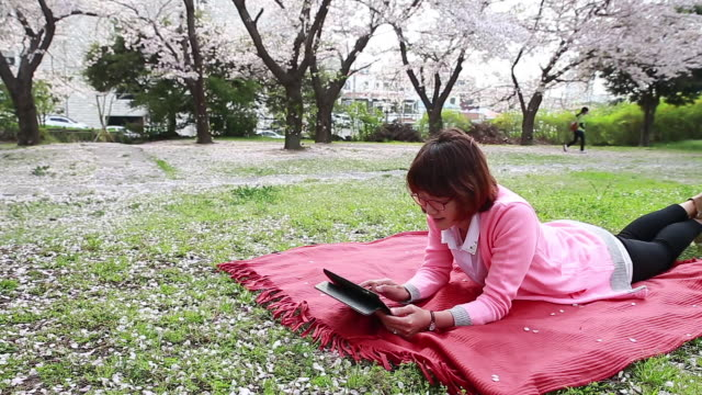 shot of cherry blossoms are in full bloom and woman wearing pink cardigan is lying on front and watching tablet pc on the pink picnic blanket in the grass - lying on front stock videos & royalty-free footage