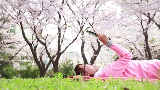 shot of cherry blossoms are in full bloom and woman wearing pink cardigan is lying on back and watching tablet pc on the pink picnic blanket in the grass - lying on back stock videos & royalty-free footage