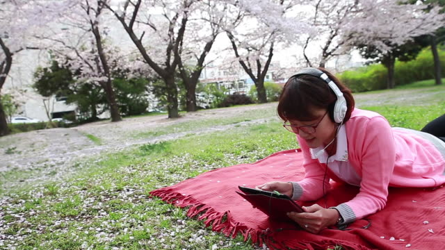 shot of cherry blossoms are in full bloom and woman wearing pink cardigan is lying on front and watching tablet pc and listening to music with headphones on the pink picnic blanket in the grass - lying on front stock videos & royalty-free footage