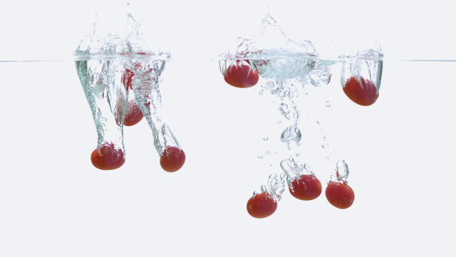 CU SLO MO Shot of Cherry Tomatoes, solanum lycopersicum, Fruits falling into Water against White Background / Calvados, Normandy, France