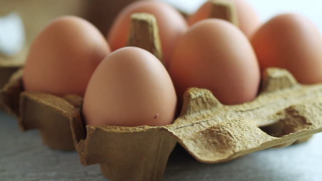 cu  pan shot of chicken eggs in brown carton / london, united kingdom  - egg stock videos & royalty-free footage