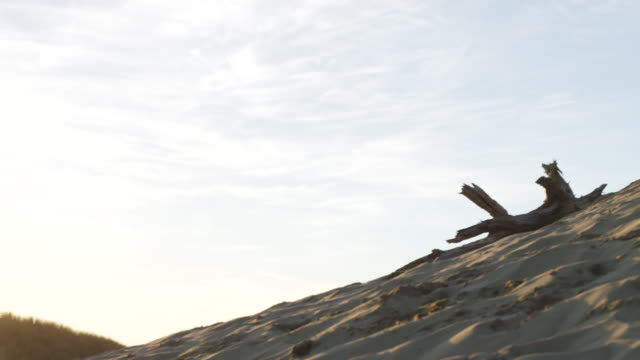 ws pan slo mo shot of child walking up steep sand dune hill at beach during sunset with wearing hiking backpack and looks back at sun / pacific city, oregon, united states - pacific city stock videos & royalty-free footage