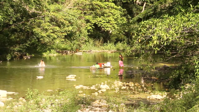ms shot of children playing in river lined with trees / aguacate, toledo, belize - wiese点の映像素材/bロール