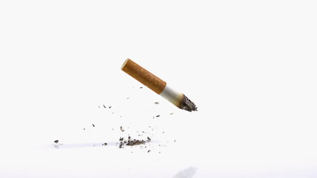 cu slo mo shot of cigarette butt falling against white background / calvados, normandy, france - calvados stock videos and b-roll footage