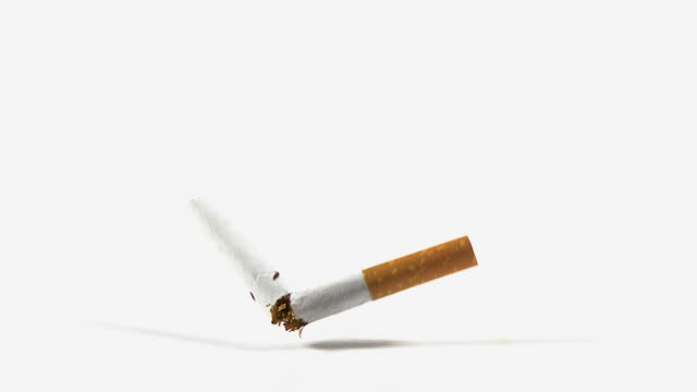 cu slo mo shot of cigarette falling against white background / calvados, normandy, france - calvados stock videos and b-roll footage