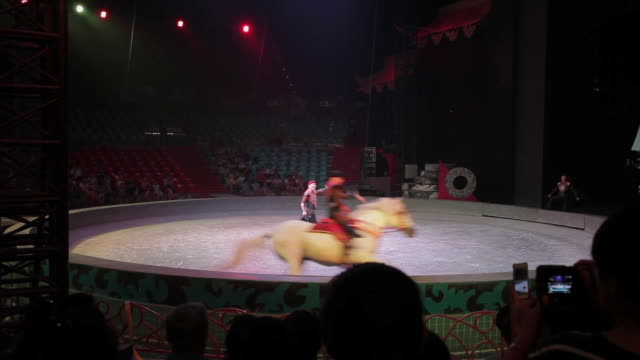 ws shot of circus performer performing horse riding in big top / xian, shaanxi, china  - large group of animals点の映像素材/bロール