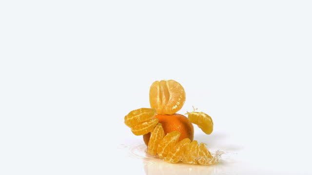 cu slo mo shot of clementines, citrus reticulata, fruits falling and splashing on water against white background / calvados, normandy, france - tangerine stock videos and b-roll footage