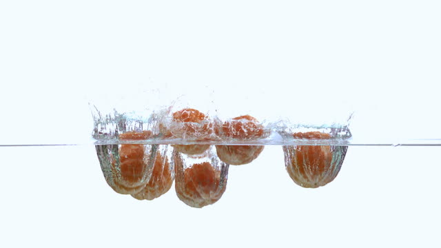 cu td slo mo shot of clementines, citrus reticulata, fruits falling and splashing into water against white background / calvados, normandy, france - tangerine stock videos and b-roll footage