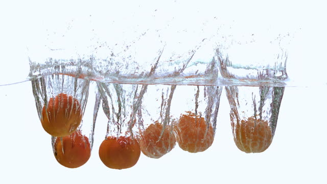 cu td slo mo shot of clementines, citrus reticulata, fruits falling and splashing into water against whitebackground / calvados, normandy, france - calvados stock-videos und b-roll-filmmaterial
