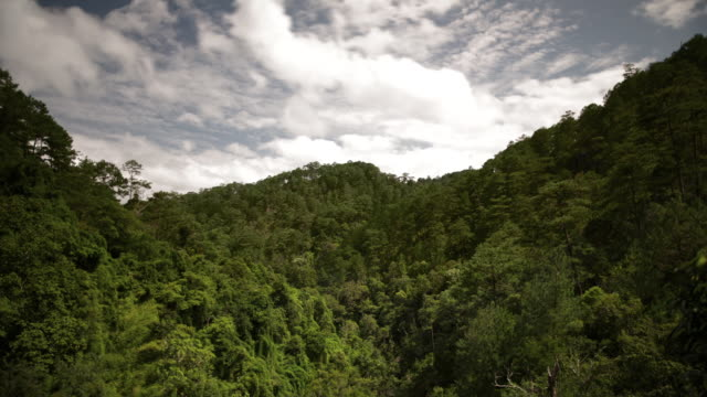 MS T/L Shot of clouds and blue sky within tree lined valley / Dalat, Vietnam