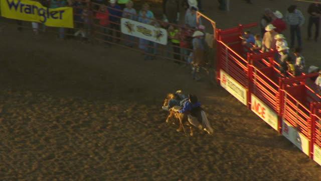 ms aerial ts shot of clown rides two horses at once at montana state fair / montana, united states - arbetsdjur bildbanksvideor och videomaterial från bakom kulisserna