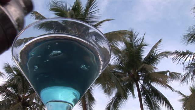 vídeos y material grabado en eventos de stock de cu shot of cocktail and palm trees / bunaken national park, sulawesi island, indonesia    - cóctel tropical