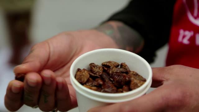 vídeos y material grabado en eventos de stock de shot of cocoon in paper cup - comida coreana