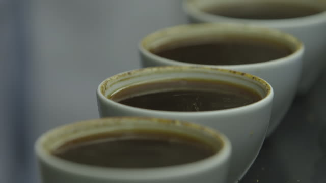 CU Shot of coffee being tasting and testing / Addis Abbaba, Ethiopia