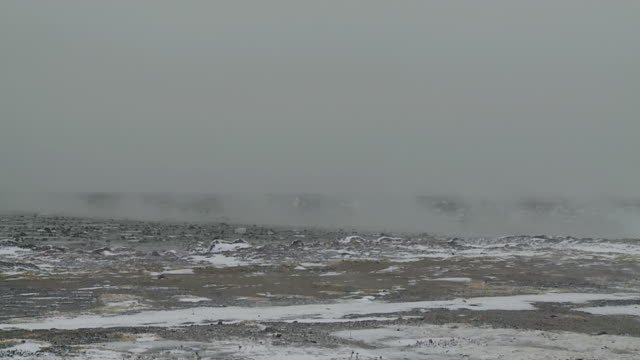 stockvideo's en b-roll-footage met ws shot of cold fog rolling over frozen ground / arviat, nunavut, canada - wiese