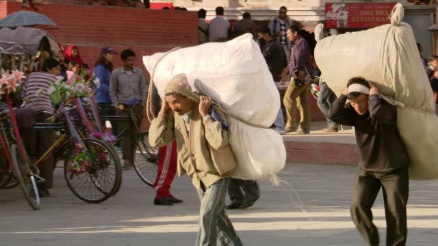 ms ts shot of collie with people / kathmandu, nepal - nepal stock-videos und b-roll-filmmaterial