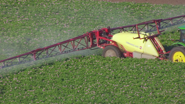 cu aerial ts pan shot of combine harvester spraying crops at farm northwest of grand forks / north dakota, united states - man made stock videos & royalty-free footage