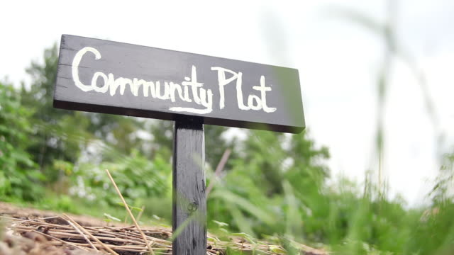 ms shot of community plot sign in garden / tornto, ontario, canada - self sufficiency stock videos and b-roll footage