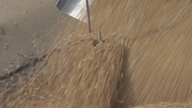 MS Shot of conveyor transporting wheat into grain reserve depot / Weinan, Shaanxi, China