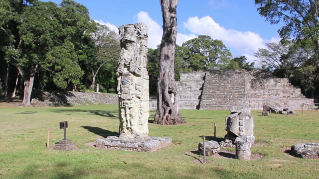 ms shot of copan / copan, honduras - old ruin stock videos and b-roll footage